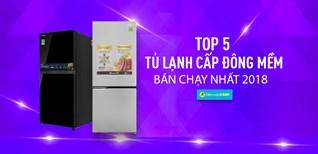 Top 5 tủ lạnh cấp đông mềm bán chạy nhất Điện máy XANH năm 2018