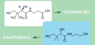 Công dụng của vitamin B5 (Pantothenic) đối với da