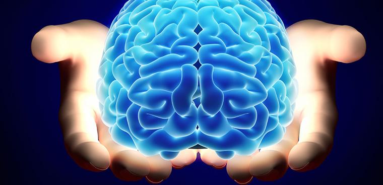 Bổ sung dinh dưỡng cho não bộ