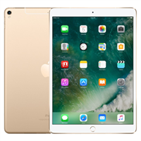 iPad Pro 10.5 inch Wifi Cellular 64GB (2017)