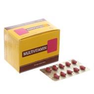 Thuốc bổ sung vitamin Multivitamin