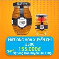 Mật ong Hoa Xuyến Chi HoneyLand lọ 250g